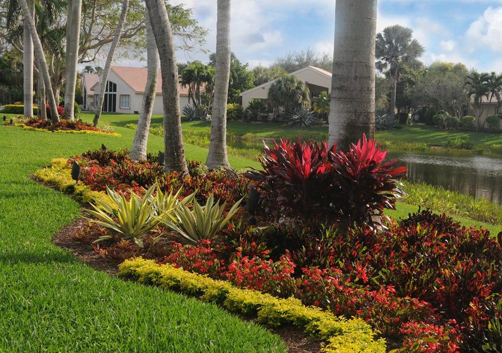 Tropical Garden Photos Pamela Crawford Palm Beach