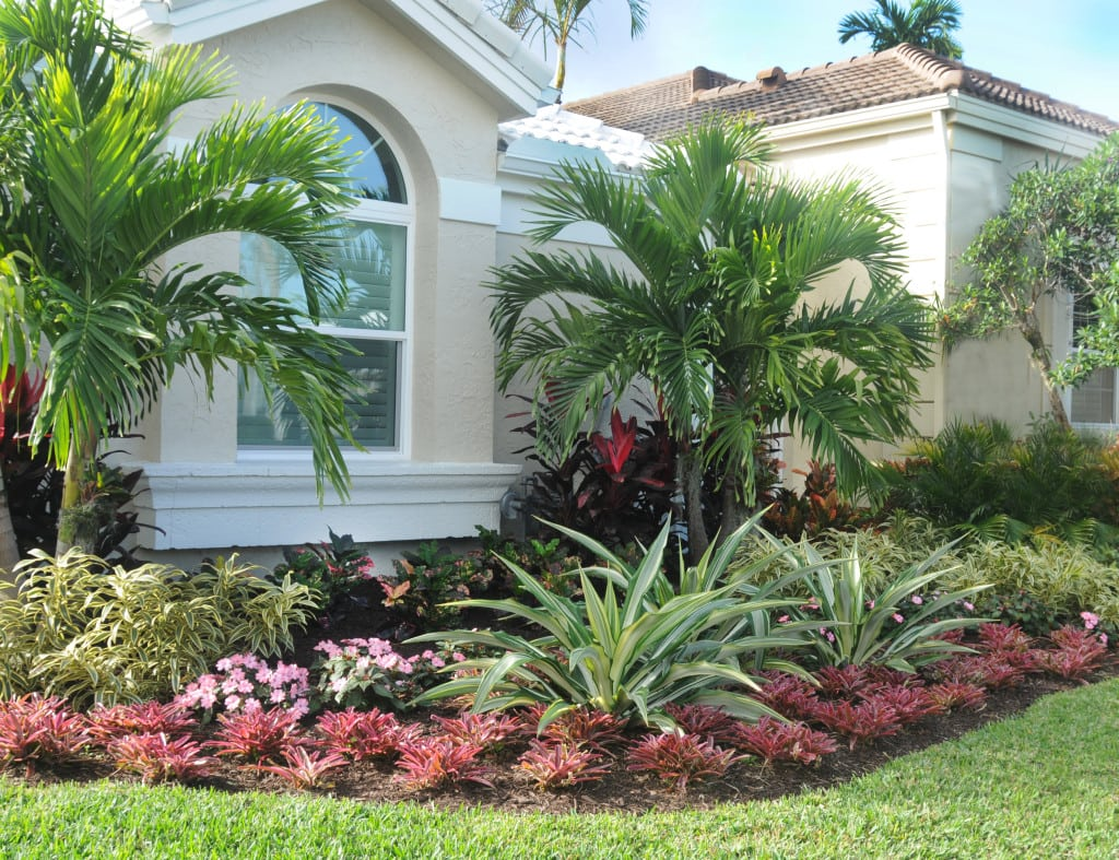 Tropical Gardens | Pamela Crawford on Palm Tree Backyard Ideas id=83298