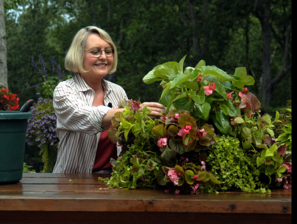 How to Plant a Spectacular Basket