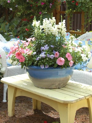 How to Plant an Easy Container Garden