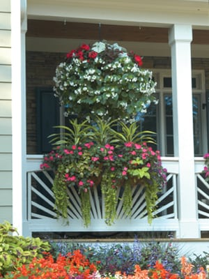These baskets are planted in the sides as well as the top. The result looks like an instant flower ball.