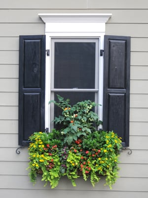 Click here to see a video showing how to hang a window box (1:28).