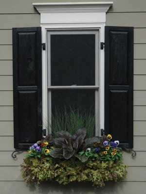Click here to buy window boxes.