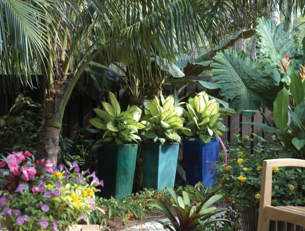 Arbor-jupiter-4c-pamela-crawford