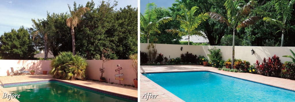 Sanctuary pool, before and after