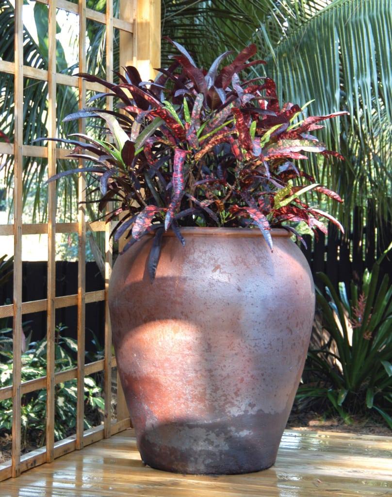 container-gardens-200-pamela-crawford