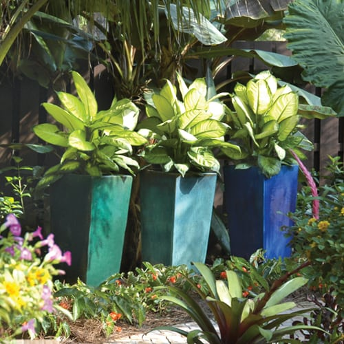 container-gardens-202-ts-pamela-crawford