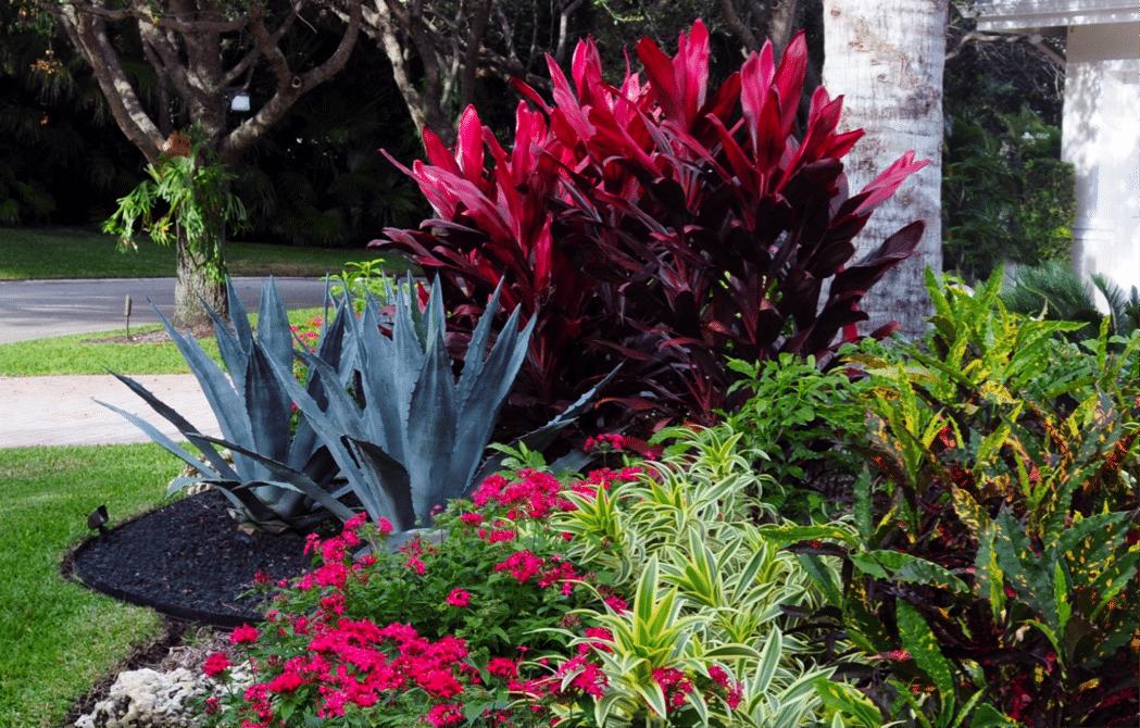 Front yard landscape designer Boca Raton
